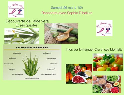 Atelier : les vertus de l'Aloe Vera